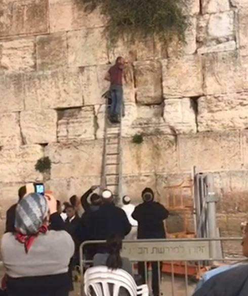 Աստվածաշնչում Ապոկալիպիսի վերաբերյալ երրորդ մարգարեությունն իրականություն դարձել. Երուսաղեմում կատարվածը ցնցել է ողջ մարդկությանը