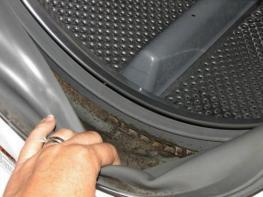 Լվացքի մեքենայի մեջ բորբո՞ս եք հայտնաբերել, ահա թե ինչ է պետք անել
