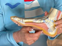 Մեջքի ցավի գաղտնիքը ձեր ոտքերում է. 10 վարժություն, որոնք ամեն բան կկարգավորեն