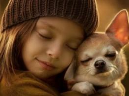 Կենդանակերպի ամենաբարի նշանները, որոնց բարությունը չափ ու սահման չունի