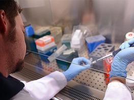 ԱՀԿ. Առաջիկա տասնամյակում քաղցկեղից կմահանա ավելի քան 13 միլիոն մարդ
