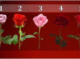 ԹԵՍՏ. Ե՞րբ կիրականանա ձեր ցանկությունը. ընտրեք վարդն ու կիմանաք