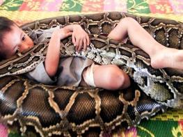 Այս հսկայական օձը փաթաթվեց երեխային.տեսեք,թե ինչ եղավ վայրկյաններ անց (տեսանյութ նյարդերից ուժեղ մարդկանց համար)